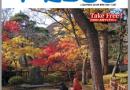 「いるかプレス秋号」が10月1日発行されました