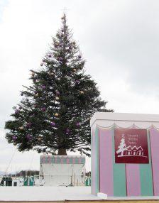 11/29~12/25 はこだてクリスマスファンタジー会場から毎日生中継!